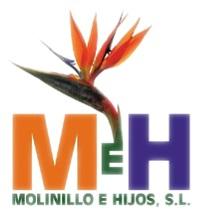 Molinillo e Hijos, S.L.